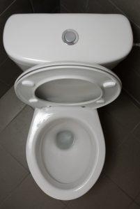 toilet-repair-open